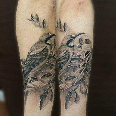тату на предплечье - чёрно-белая птица на ветке