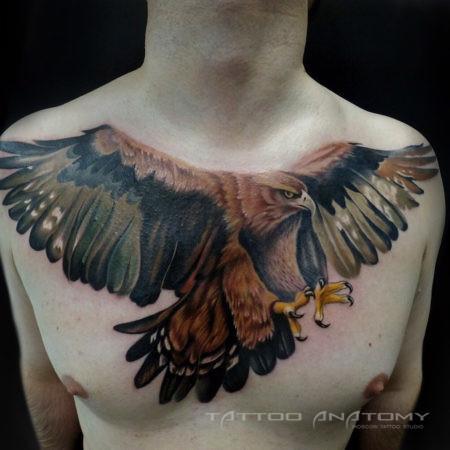 Мужское тату на груди в стиле реализм орёл