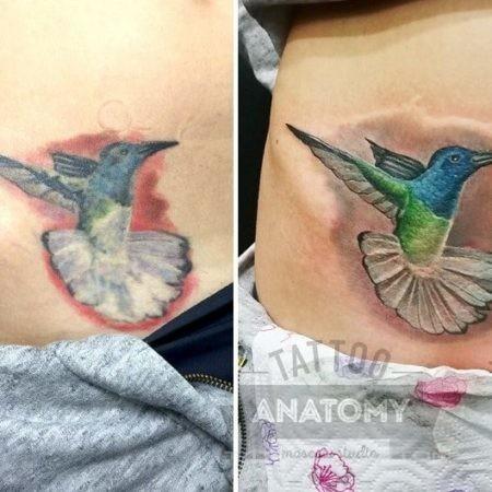 Реставрация тату колибри цветное в стиле реализм