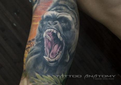 Мужское тату на плече горилла в стиле реализм