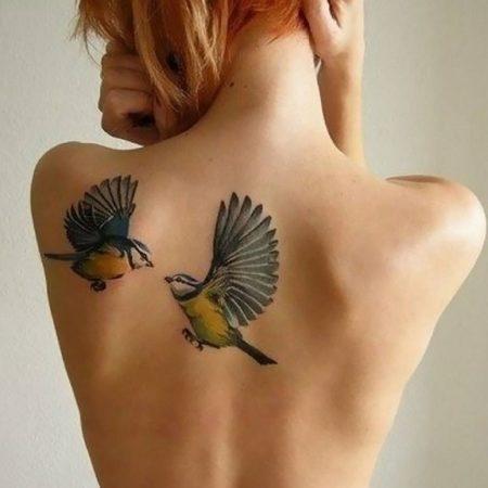 Женская тату на лопатке две птицы цветное в стиле реализм