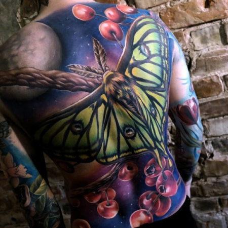 Мужское цветное тату на спине бабочка