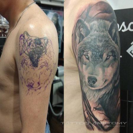 Мужское тату-исправление Волк