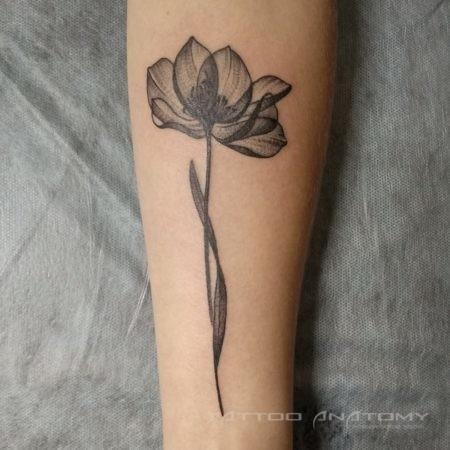 Женское тату на предплечье в стиле Linework цветок