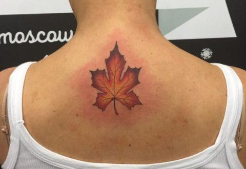 тату женское кленовый лист на спине
